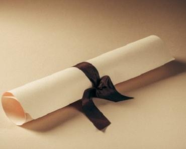 Al finalizar la formación obtendrás tu diploma acreditativo.Una vez completado el curso recibirás un diploma exclusivo que acredita que has asumido los conocimientos y alcanzado los objetivos del curso.